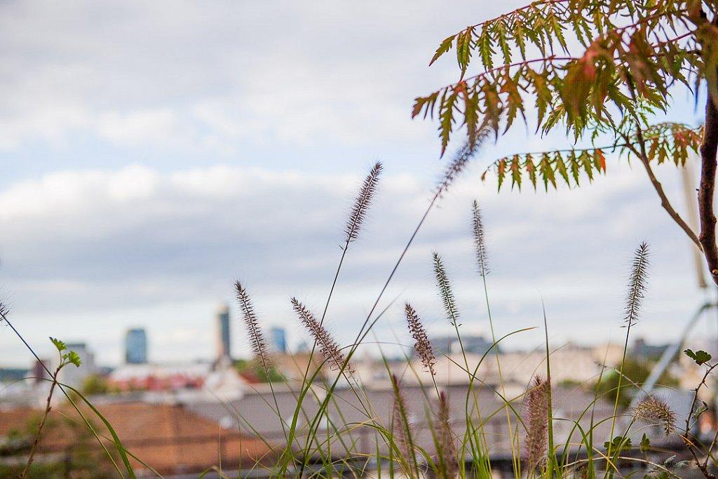foto@grafas  /  #freshvilnius  fotografas freshvilnius samsung stogas vilnius  by RANDOM.LT